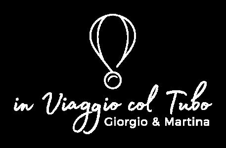 iVcT2019_logo_white